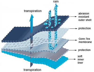Gore-Tex Fabric Construction